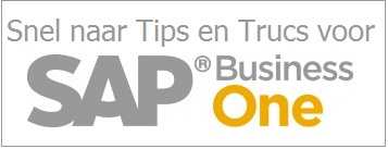 SAP Business One Tips en Trucs