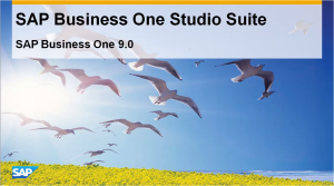 SAP Business One Studio Suite 900